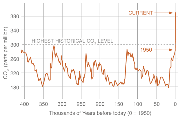 Historical carbon dioxide levels
